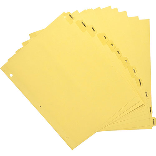 """Business Source Indexes, Plastic Tabs, Mthly, 3HP, 8-1/2""""x11"""",12/ST,"""