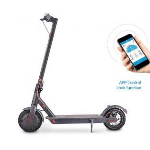 M6 Plus 250W Lithium Ion Electric Scooter